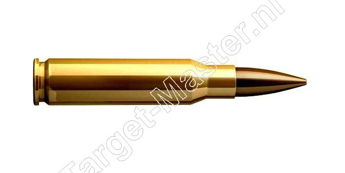 <br />308 WINCHESTER